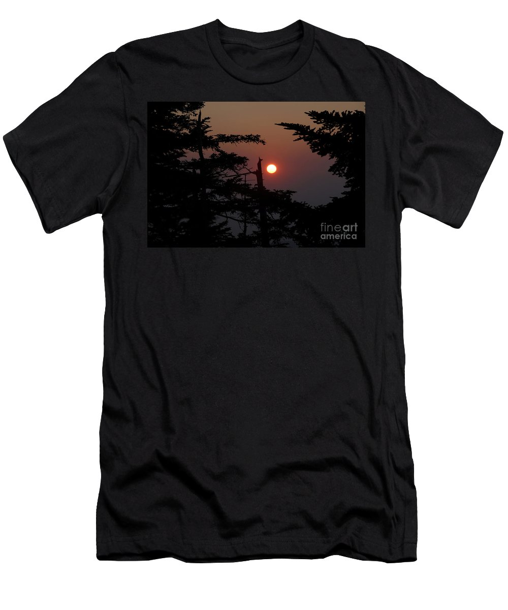 Smoky Mountain National Park Men's T-Shirt (Athletic Fit) featuring the photograph Smoky Mountain Sunset by David Lee Thompson