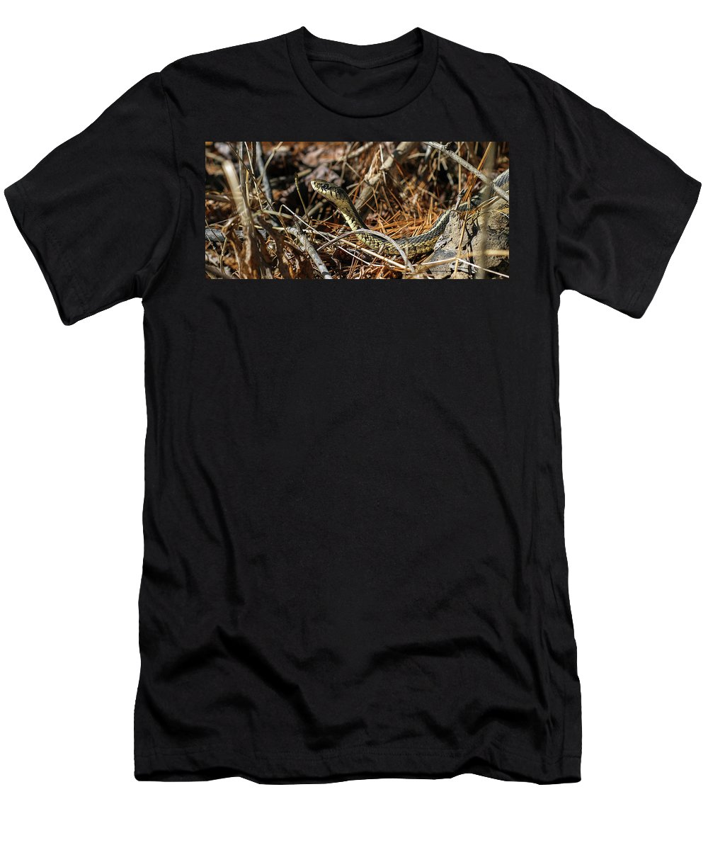 50 Men's T-Shirt (Athletic Fit) featuring the photograph Snake by Marissa Mancini