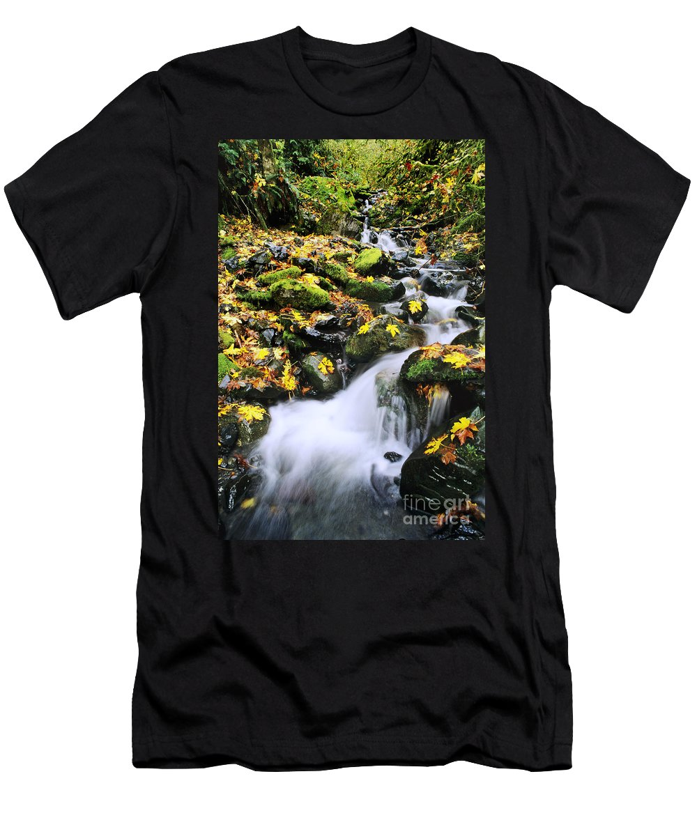 29-pfs0155 Men's T-Shirt (Athletic Fit) featuring the photograph Snoqualmie National Fores by Greg Vaughn - Printscapes