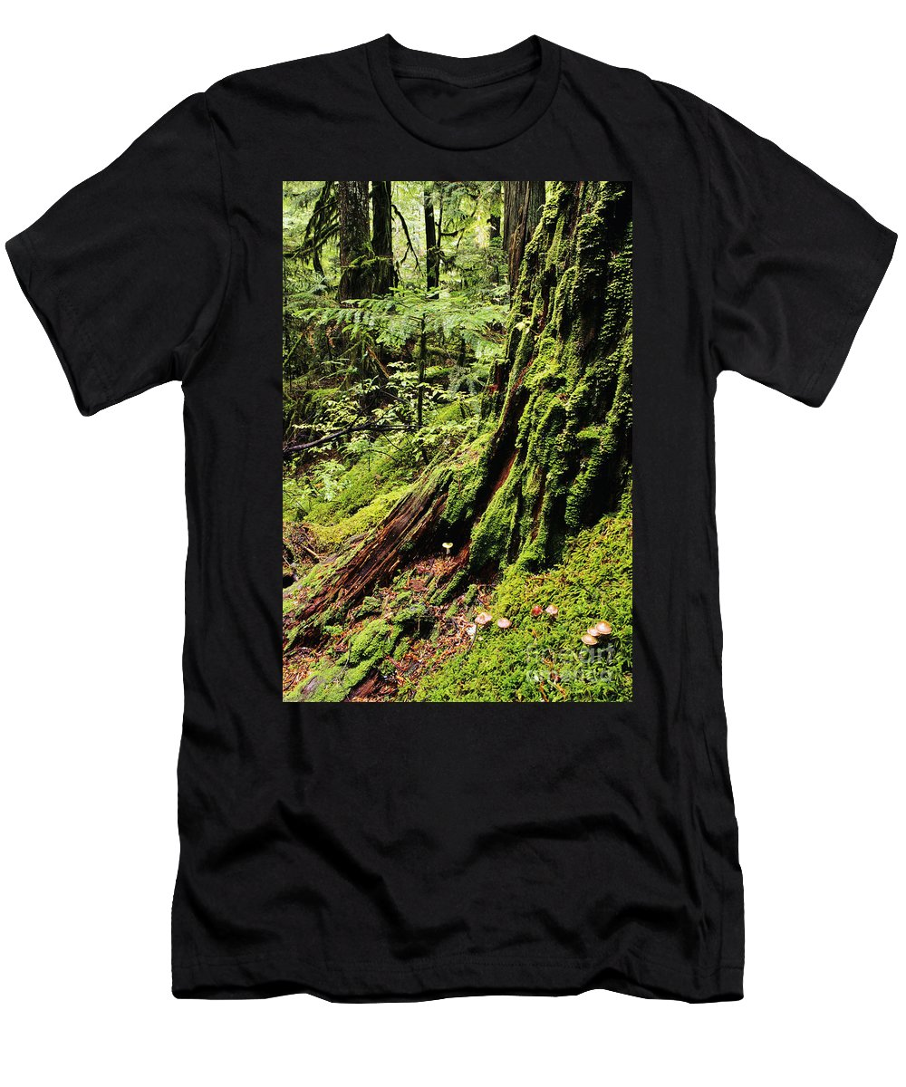 Baker Men's T-Shirt (Athletic Fit) featuring the photograph Snoqualmie National Forest by Greg Vaughn - Printscapes