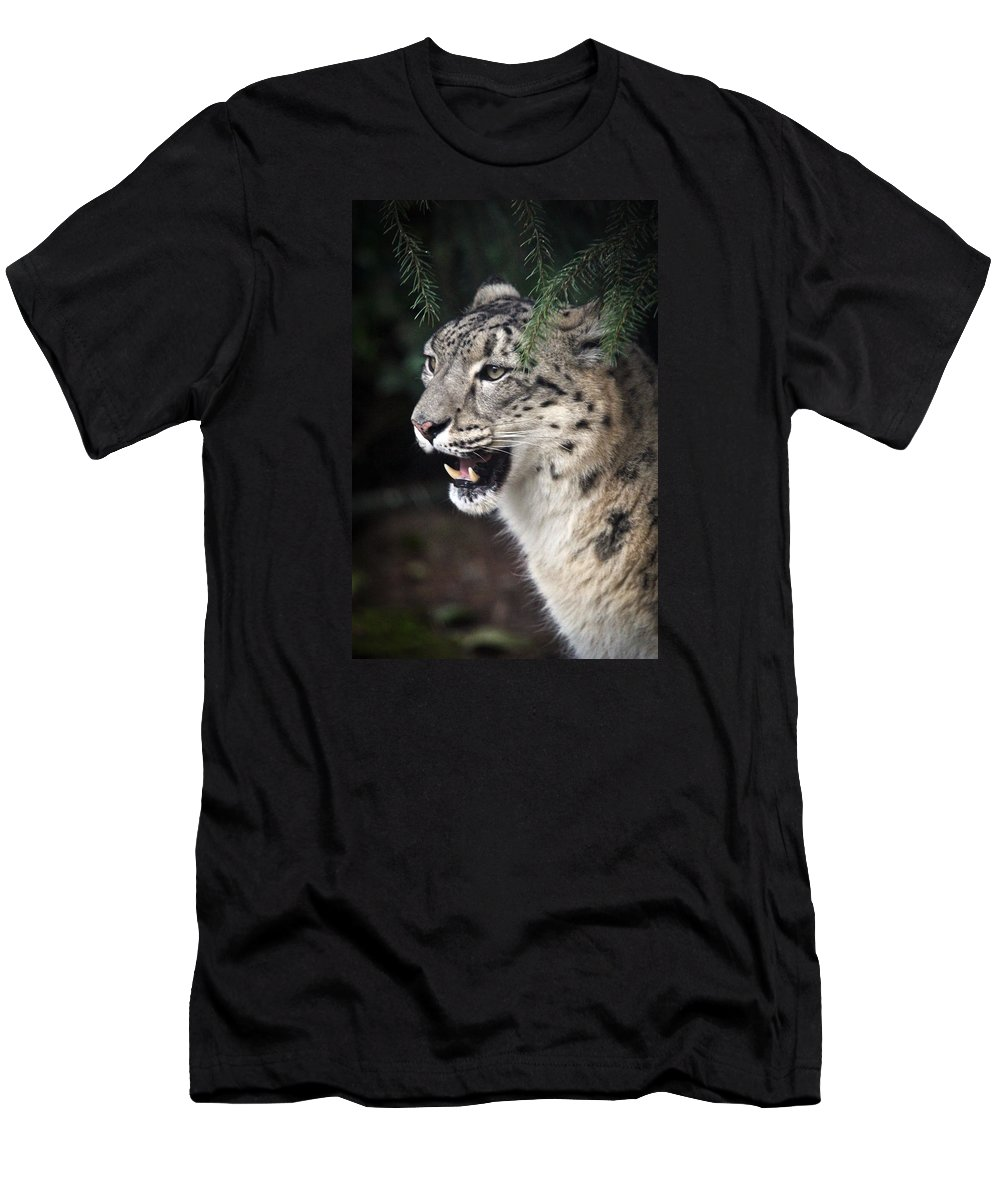 Snow Leopard Men's T-Shirt (Athletic Fit) featuring the photograph Snow Leopard Portrait by Athena Mckinzie