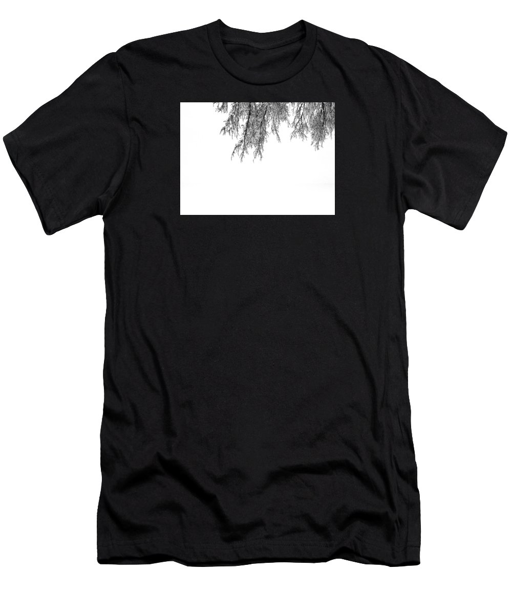 Black And White Men's T-Shirt (Athletic Fit) featuring the photograph Snow On The Branches Three by Lyle Crump