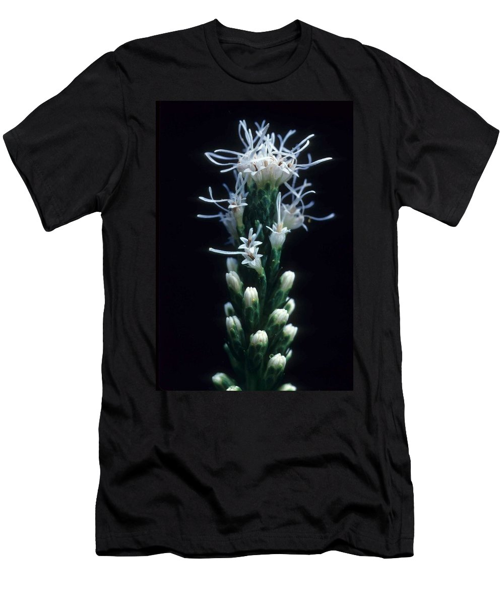 Flower Men's T-Shirt (Athletic Fit) featuring the photograph Snowflake Flower by Laurie Paci