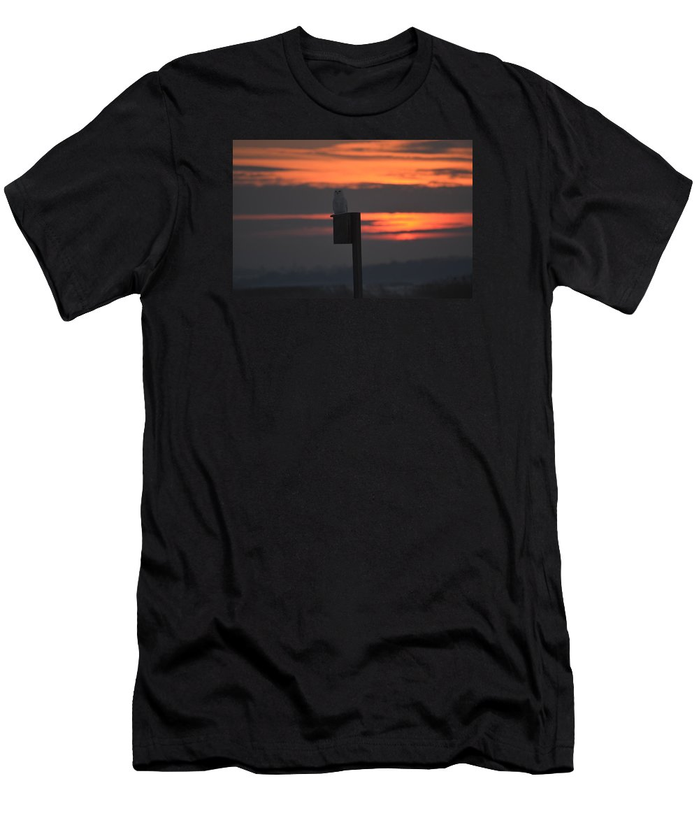 Owl Wildlife Men's T-Shirt (Athletic Fit) featuring the photograph Snowy At Sunset by Christine Russell