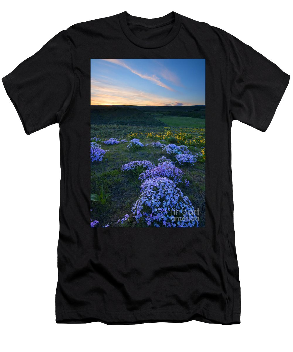 Snowy Phlox Men's T-Shirt (Athletic Fit) featuring the photograph Snowy Phlox Sunset by Mike Dawson