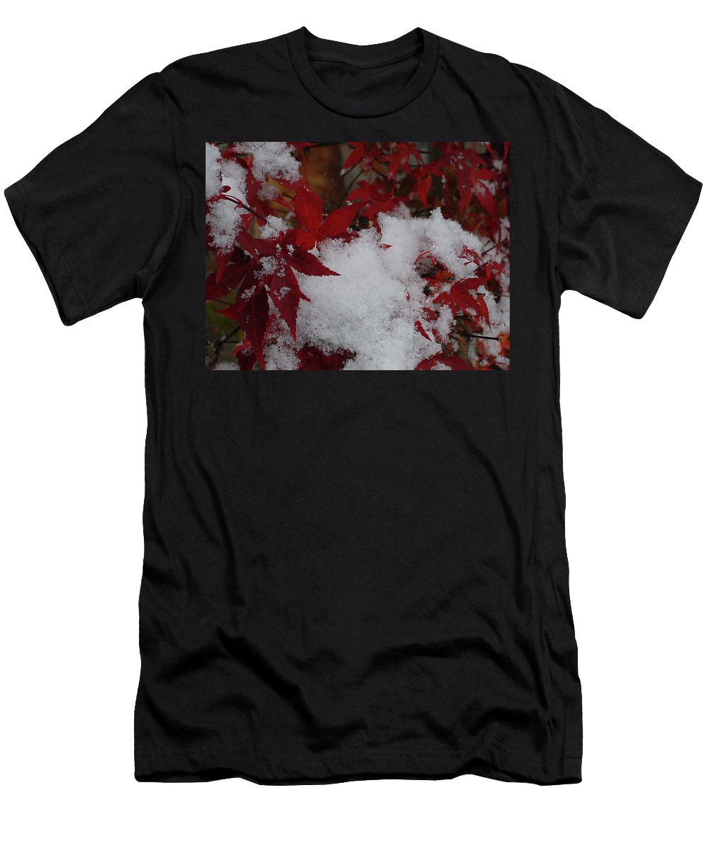 Red Men's T-Shirt (Athletic Fit) featuring the photograph Snowy Red Maple by Shirley Heyn
