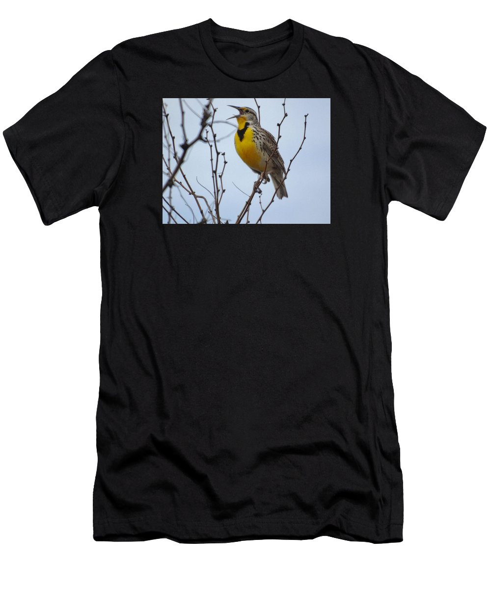 Singing Meadowlark In Mesquite Men's T-Shirt (Athletic Fit) featuring the photograph Songster by Shellda Patino