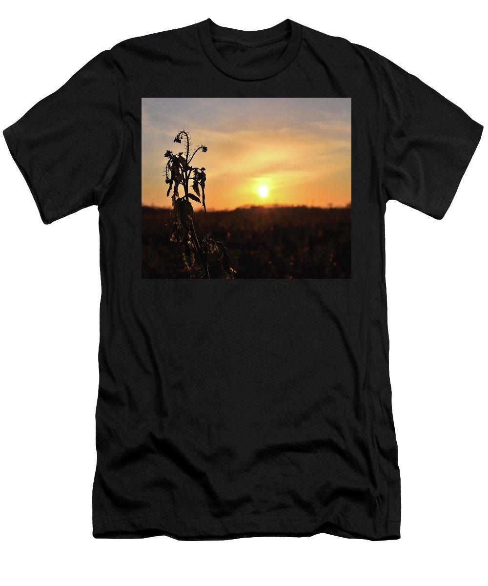 Sonnenuntergang Blume Flowwer Sky Himmel Men's T-Shirt (Athletic Fit) featuring the photograph Sonnenuntergang by Scimitarable