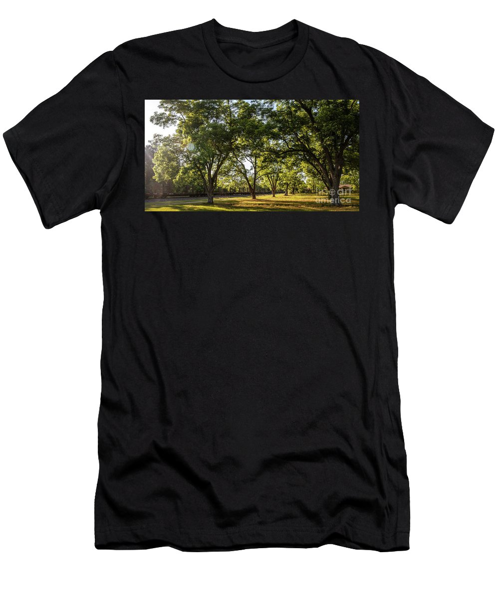 South Men's T-Shirt (Athletic Fit) featuring the photograph South Georgia by Andrea Anderegg