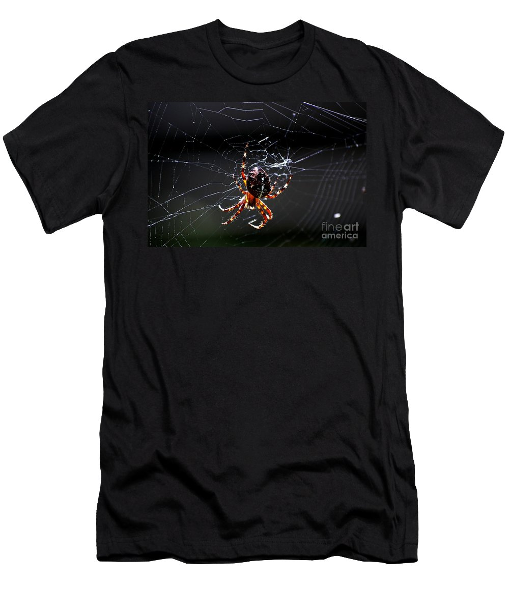 Digital Photo Men's T-Shirt (Athletic Fit) featuring the photograph Spider by David Lane