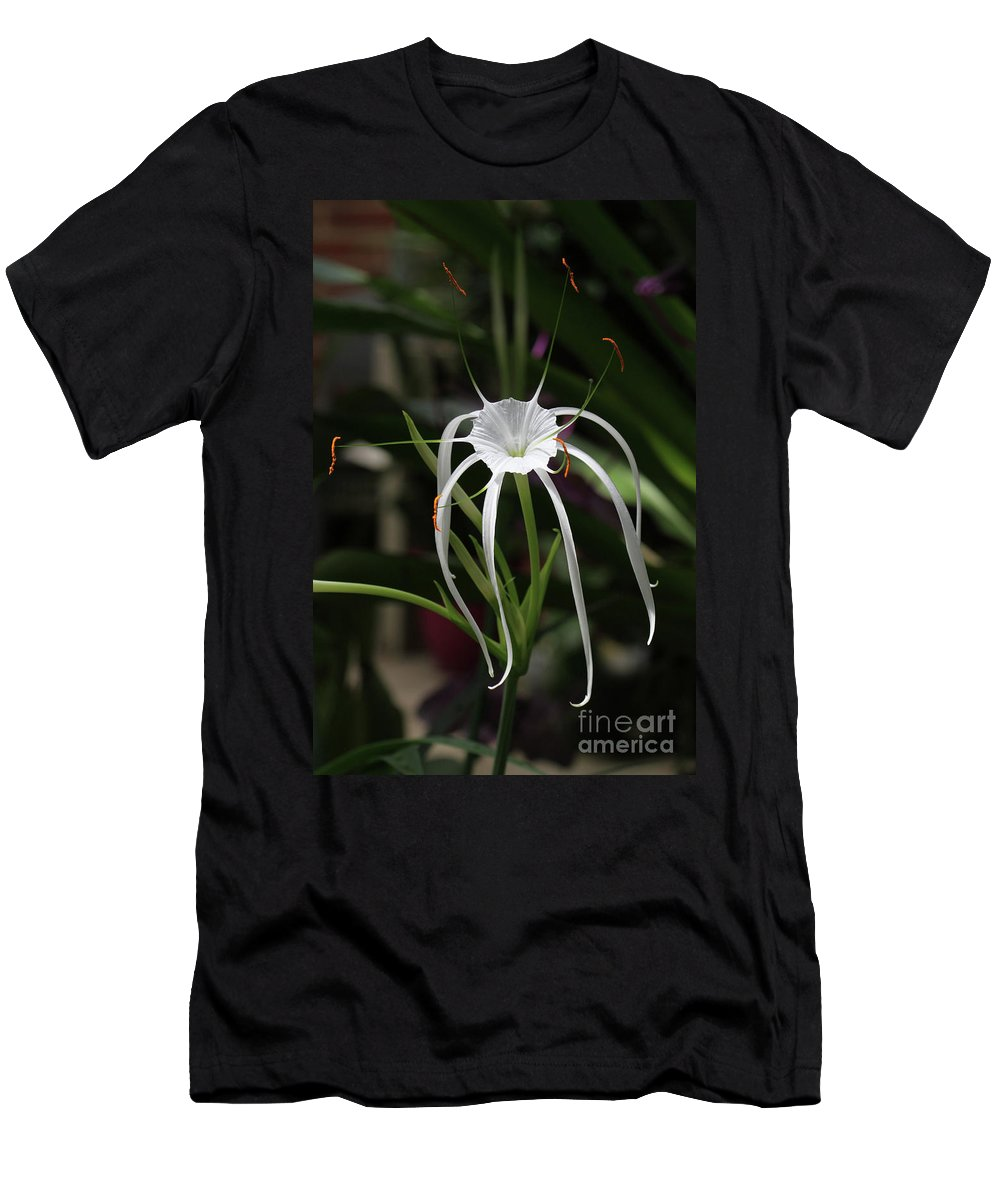 Flower Men's T-Shirt (Athletic Fit) featuring the photograph Spider Lily by Judy Whitton