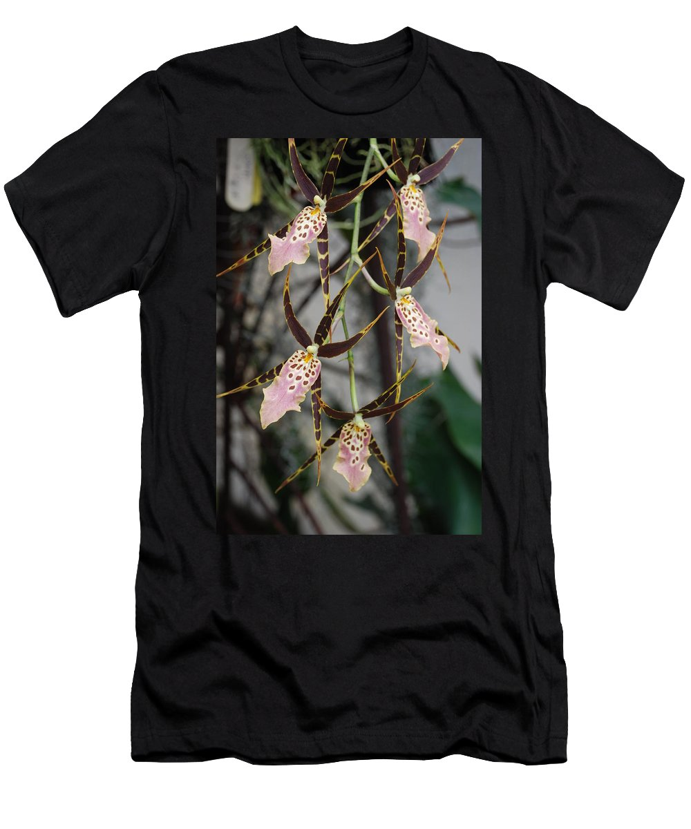 Pink Men's T-Shirt (Athletic Fit) featuring the photograph Spider Orchids by Rob Hans