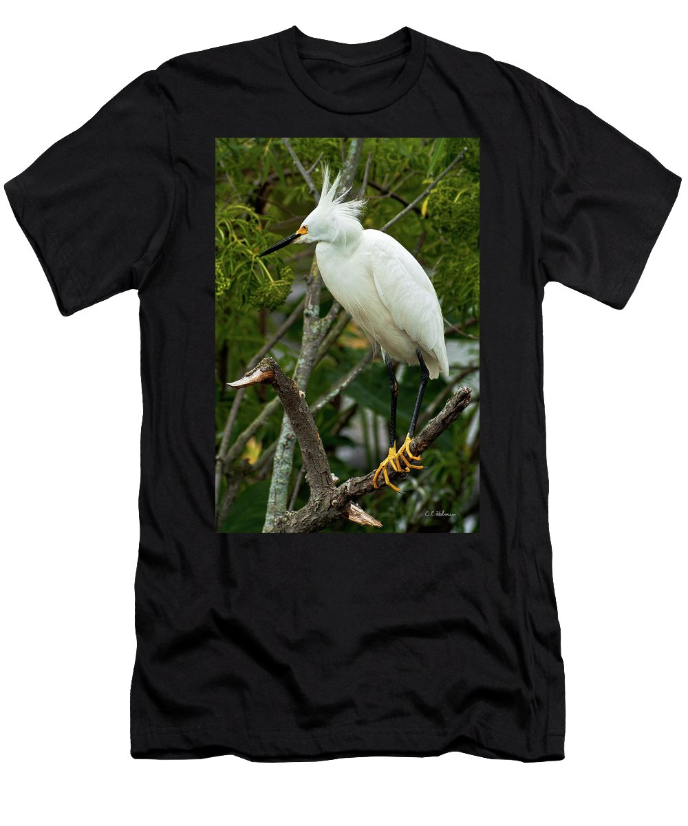 Bird Men's T-Shirt (Athletic Fit) featuring the photograph Spiked by Christopher Holmes