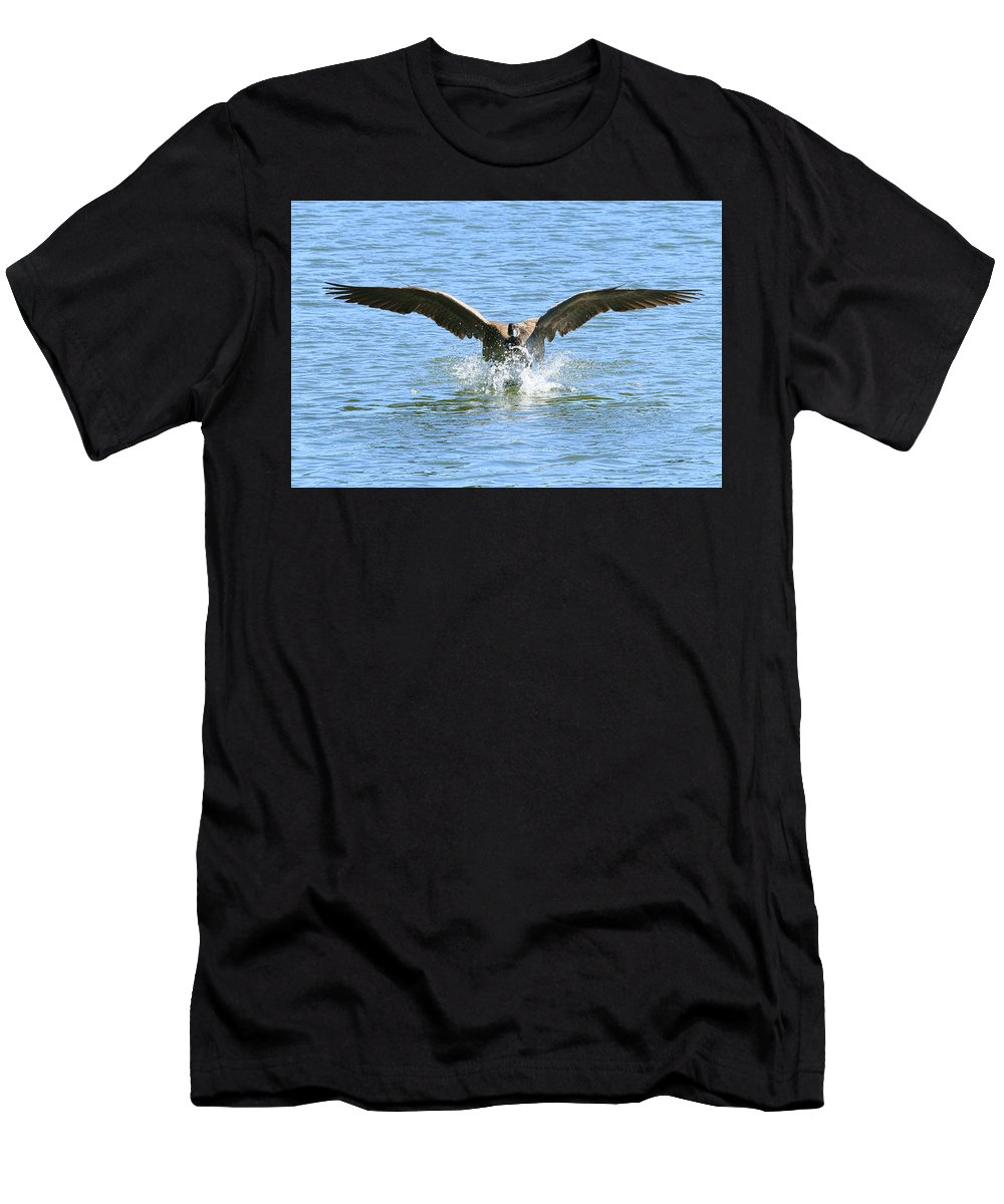 Splash Landing Men's T-Shirt (Athletic Fit) featuring the photograph Splash Landing by Steve McKinzie