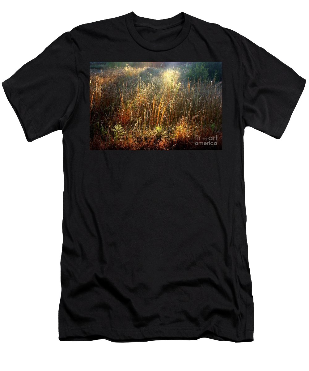 Marsh Men's T-Shirt (Athletic Fit) featuring the photograph Spotlight On The Marsh by Carol Groenen