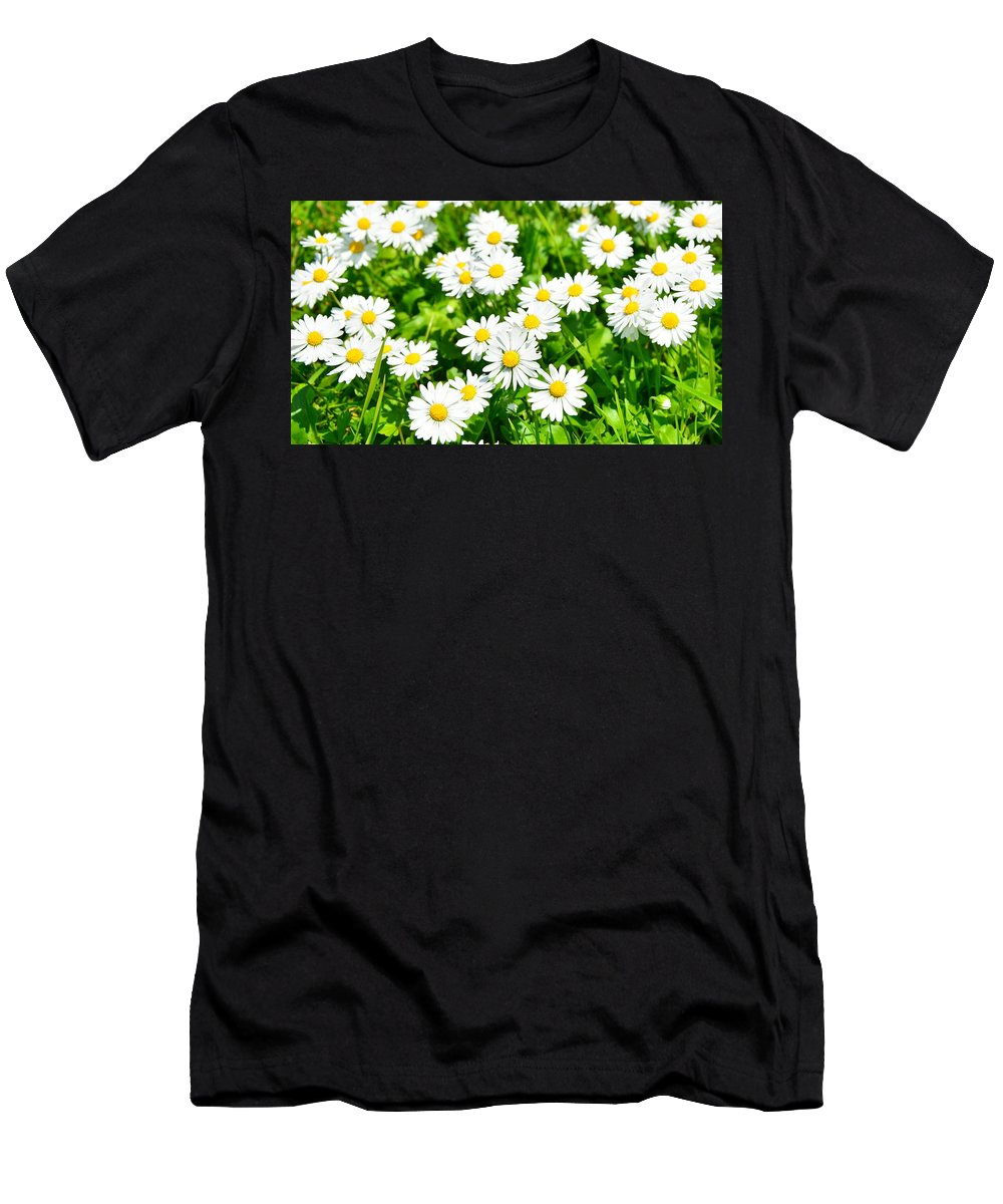 Spring Men's T-Shirt (Athletic Fit) featuring the photograph Spring Daisy In The Meadow by Predrag Lukic