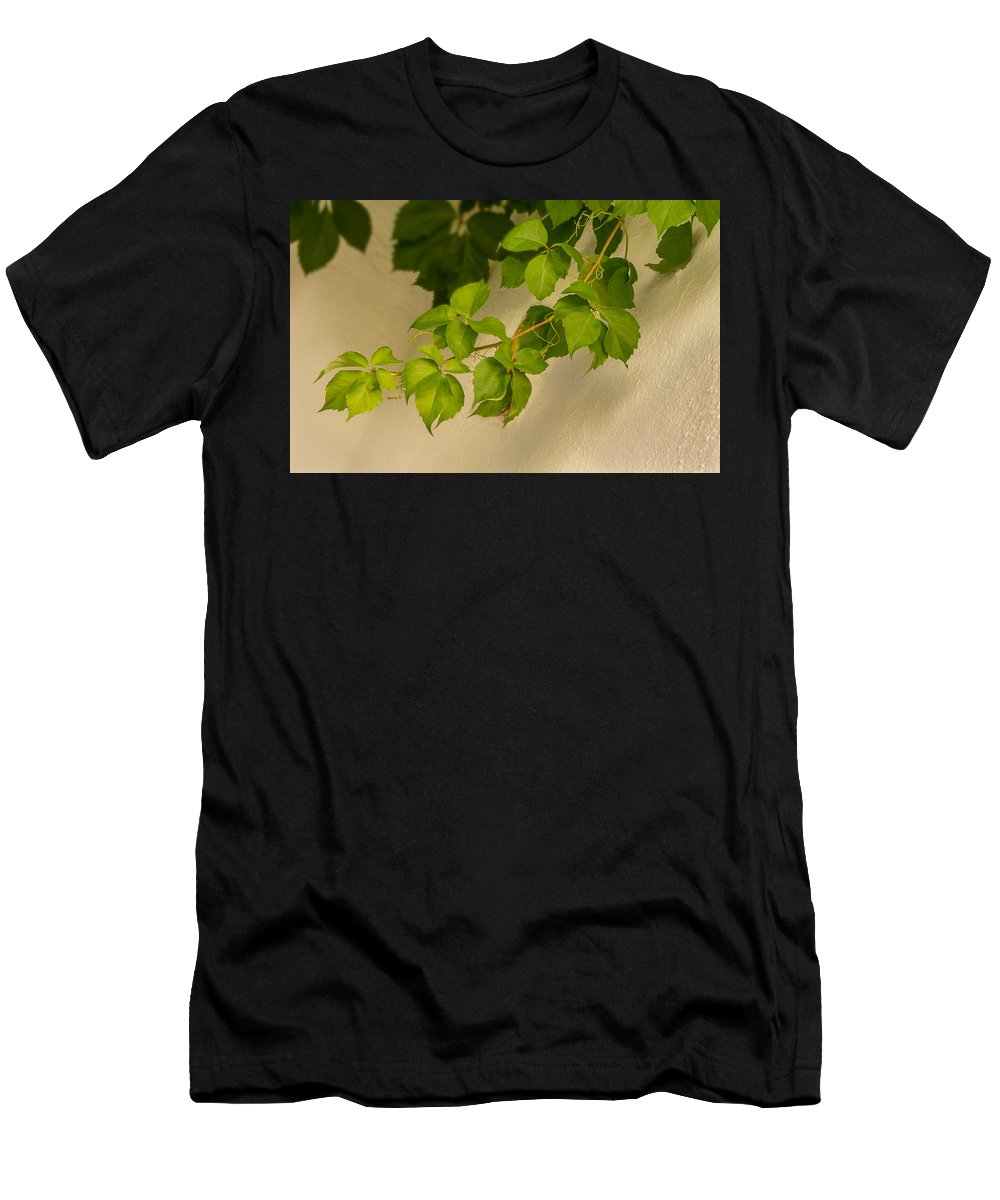 Foliage Men's T-Shirt (Athletic Fit) featuring the photograph Spring Foliage by Peter Hayward Photographer