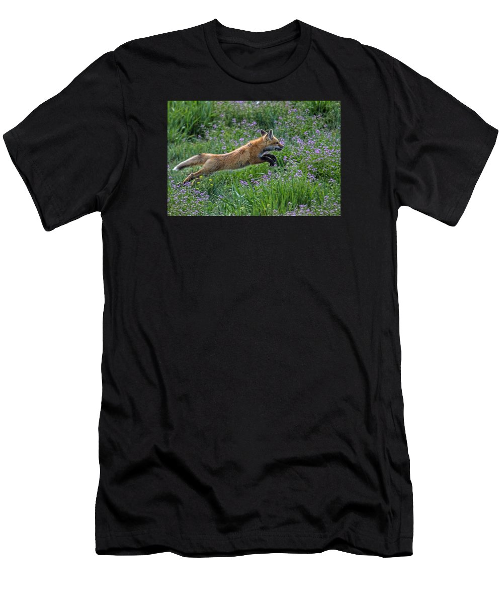 Wildlife T-Shirt featuring the photograph Spring Kit by Alana Thrower