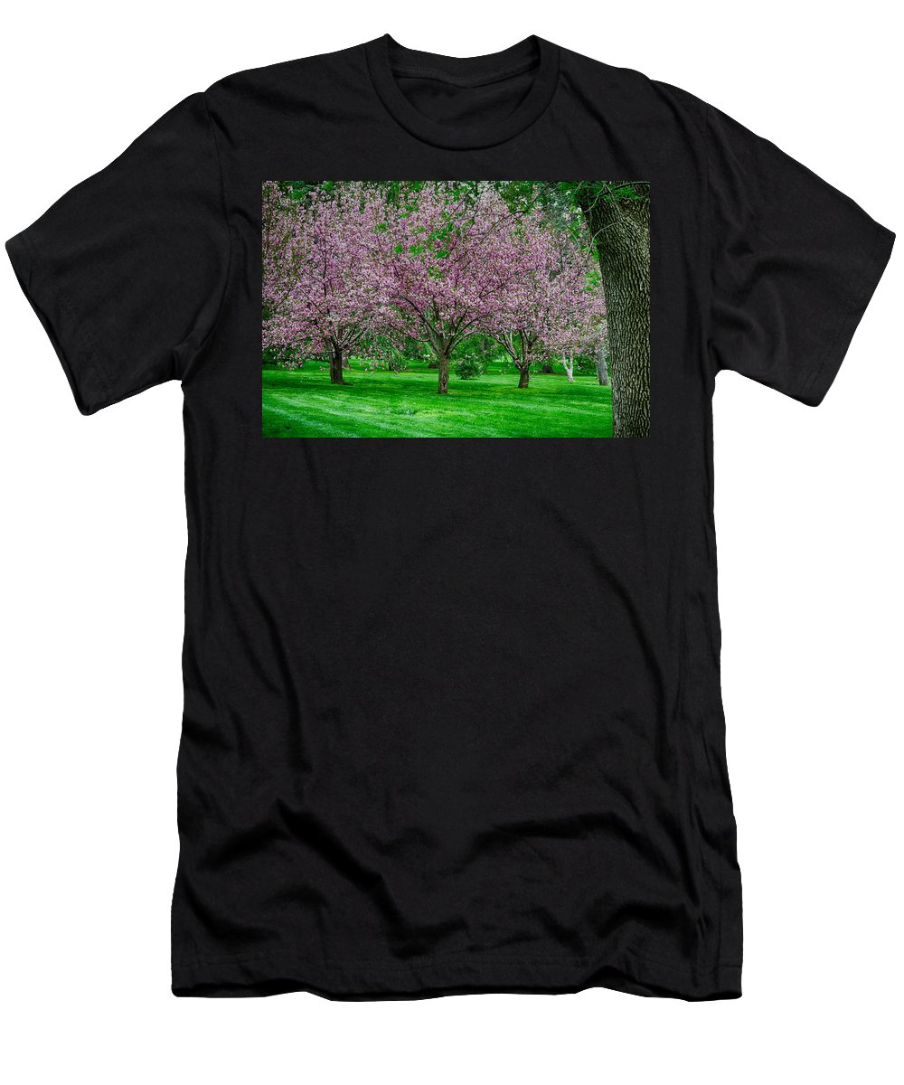 Spring Men's T-Shirt (Athletic Fit) featuring the photograph Spring Series #20 by John Diebolt