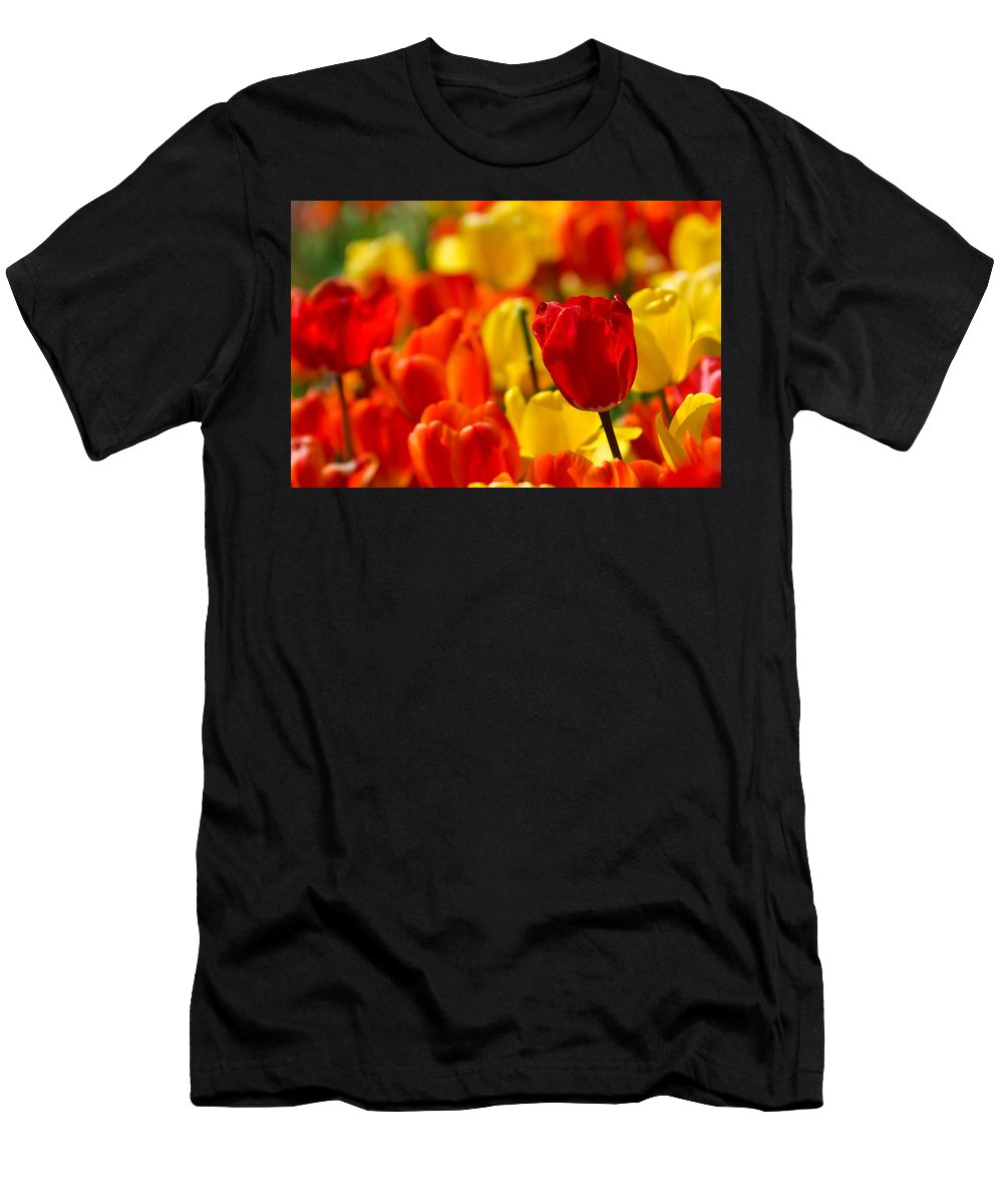 Spring Men's T-Shirt (Athletic Fit) featuring the photograph Spring Tulips by Deb Lanford