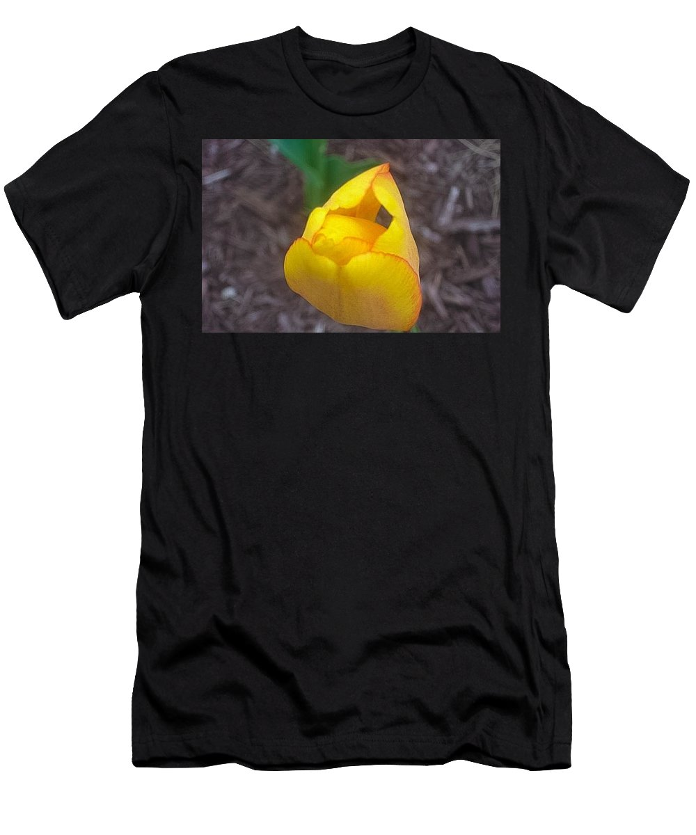 Spring Men's T-Shirt (Athletic Fit) featuring the photograph Spring Yellow Tulip by Lindsay Lovins