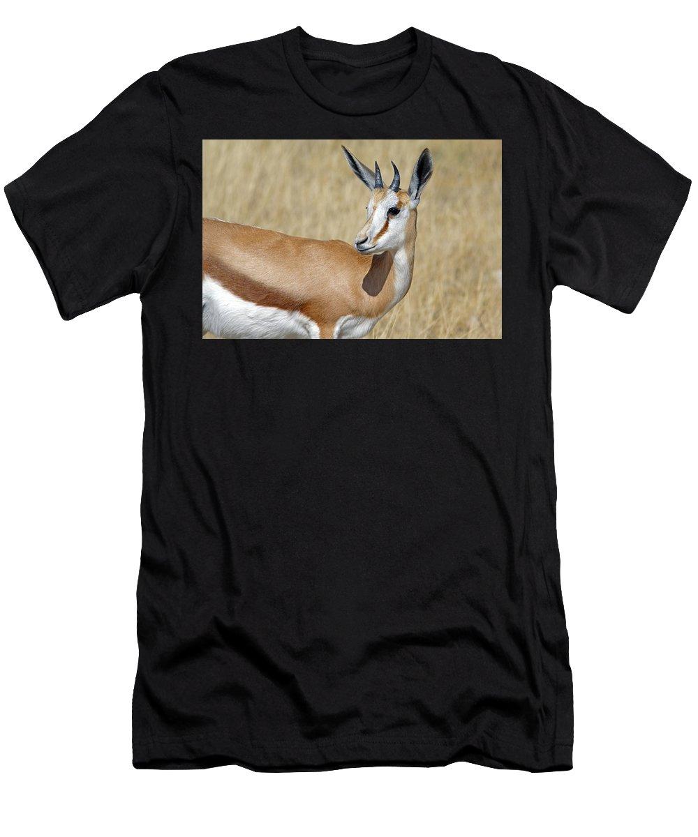 Springbok Men's T-Shirt (Athletic Fit) featuring the photograph Springbok Portrait by Aivar Mikko