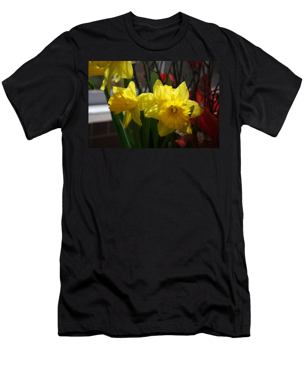Daffodils Men's T-Shirt (Athletic Fit) featuring the photograph Springtime Daffodils by Devon Kotke