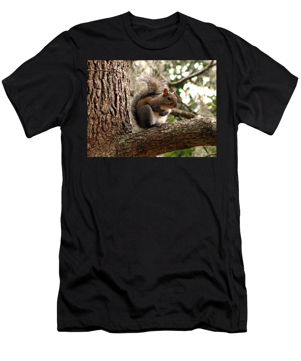 Squirrel Men's T-Shirt (Athletic Fit) featuring the photograph Squirrel 9 by J M Farris Photography