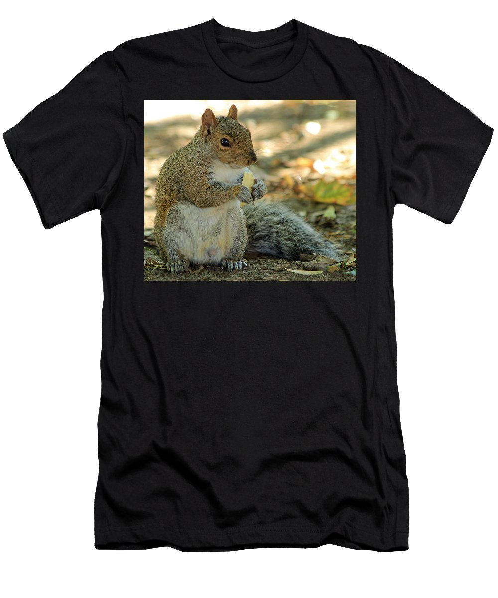 Squirrel Men's T-Shirt (Athletic Fit) featuring the photograph Squirrel by Anne Venissac