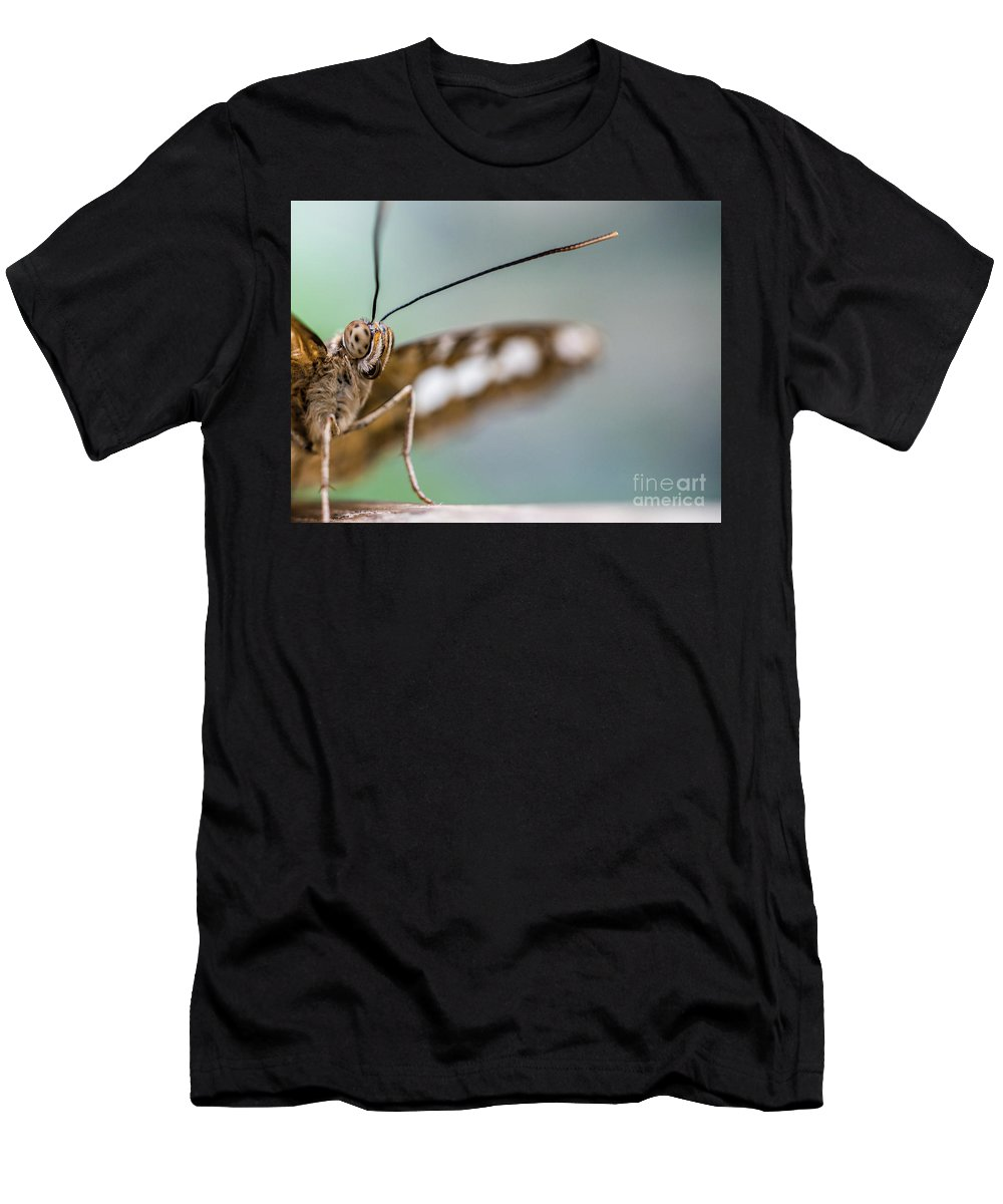 Butterfly Men's T-Shirt (Athletic Fit) featuring the photograph Eye To Eye by DiFigiano Photography
