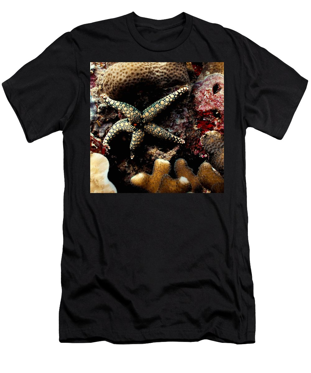 Starfish Men's T-Shirt (Athletic Fit) featuring the photograph Starfish by Dragica Micki Fortuna