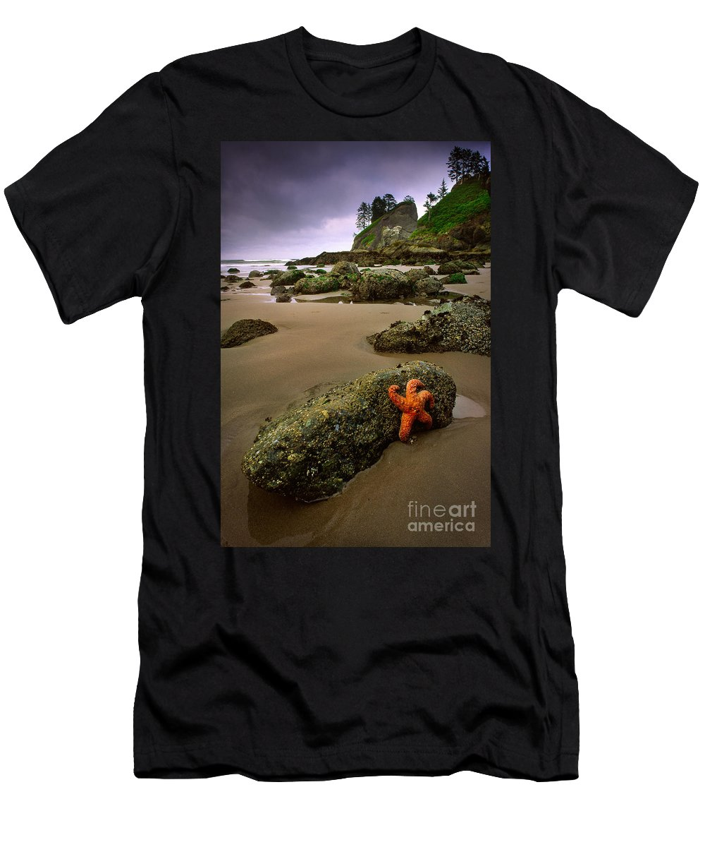 America Men's T-Shirt (Athletic Fit) featuring the photograph Starfish On The Rocks by Inge Johnsson