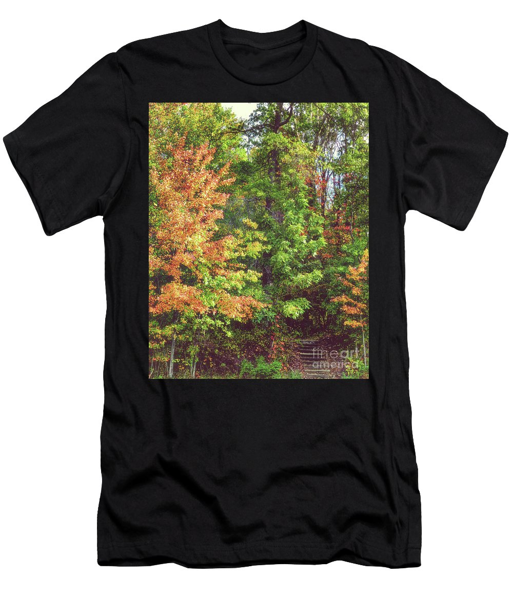 Trees Men's T-Shirt (Athletic Fit) featuring the photograph Steps Into The Unknown by Carol A Commins
