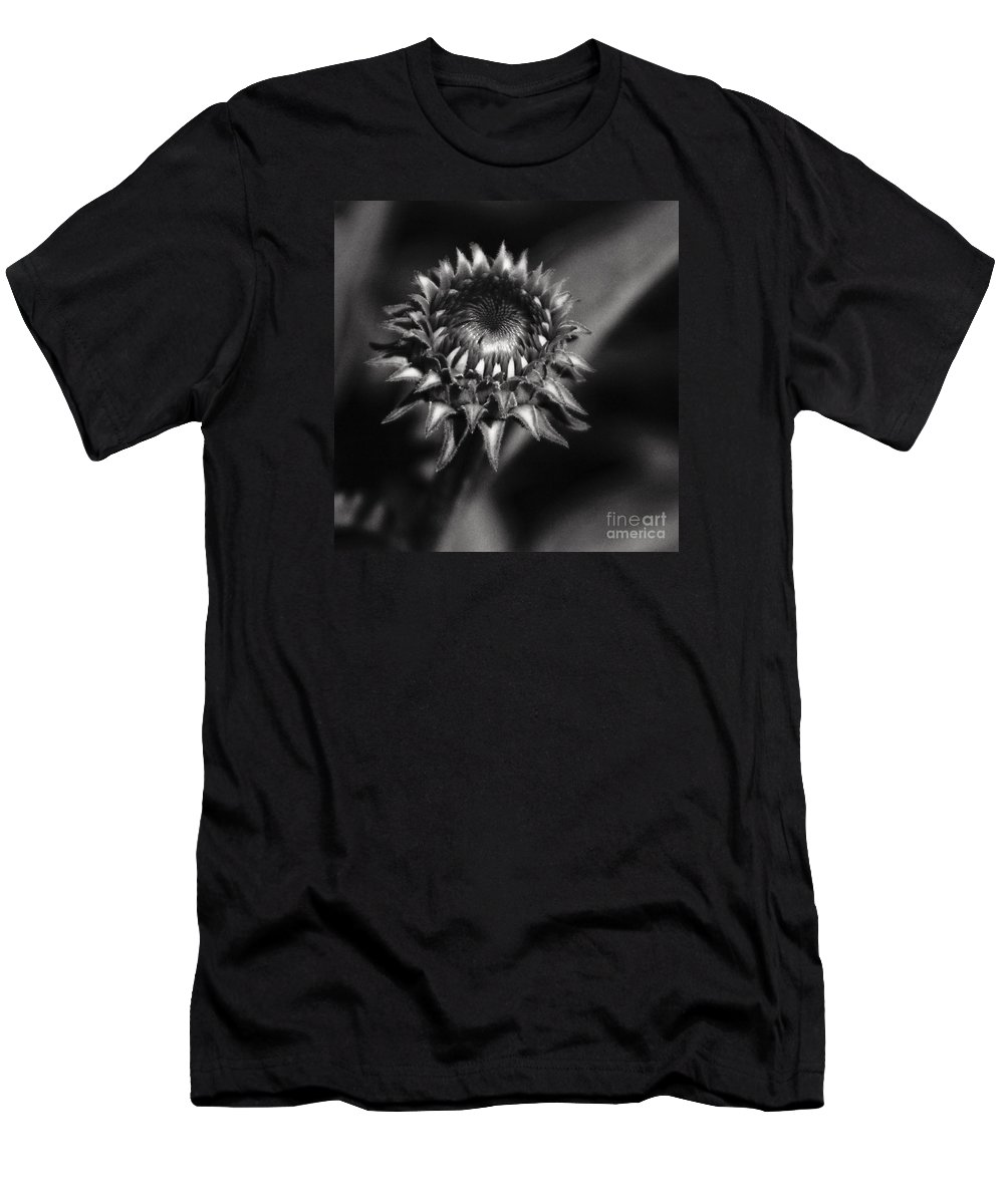 Coneflower Men's T-Shirt (Athletic Fit) featuring the photograph Storybook Villains by Linda Shafer
