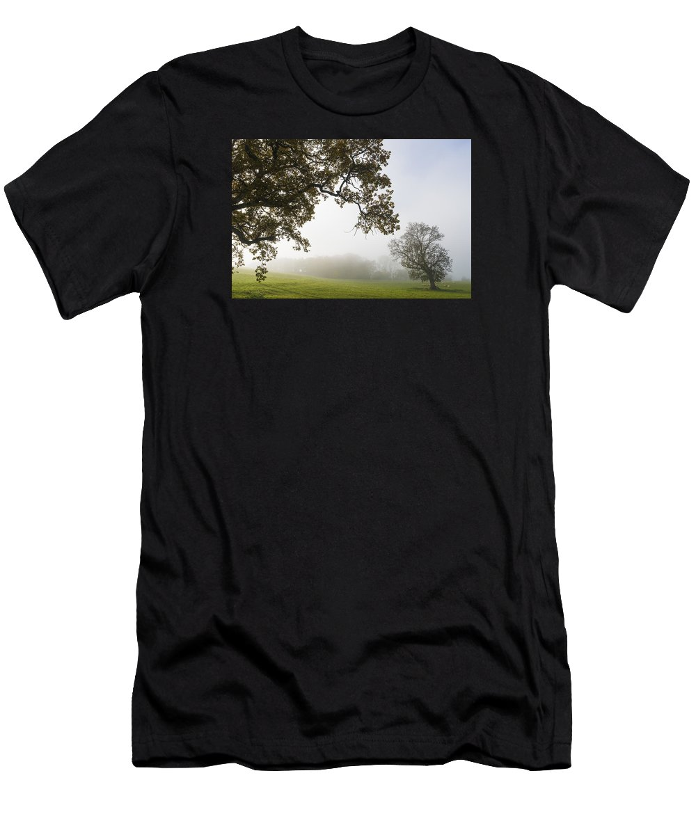 Acomb Men's T-Shirt (Athletic Fit) featuring the photograph Stretch by David Taylor