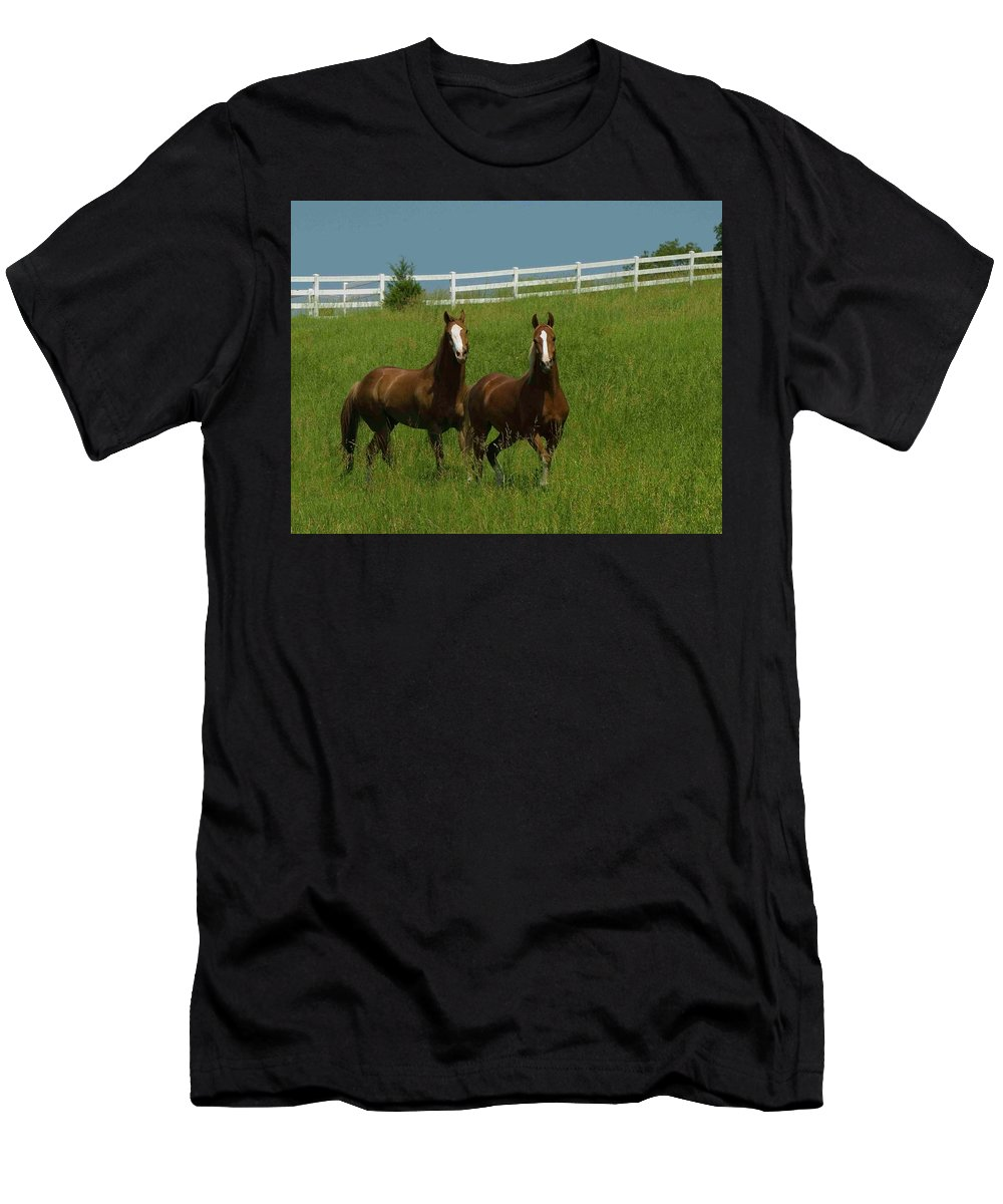 Horse Men's T-Shirt (Athletic Fit) featuring the photograph Strolling by Michael Barry