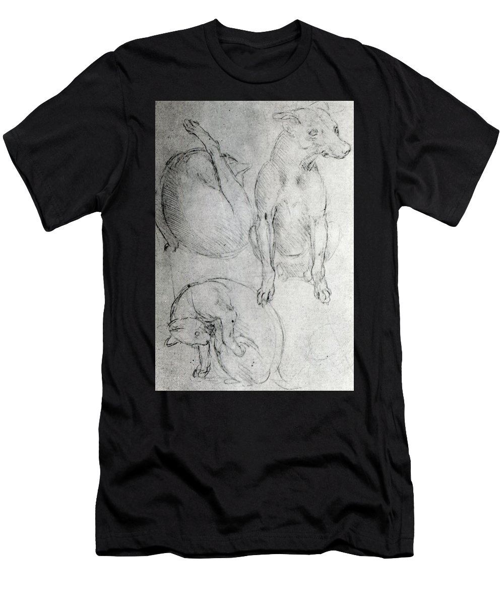 Da Vinci Men's T-Shirt (Athletic Fit) featuring the drawing Study Of A Dog And A Cat by Leonardo da Vinci