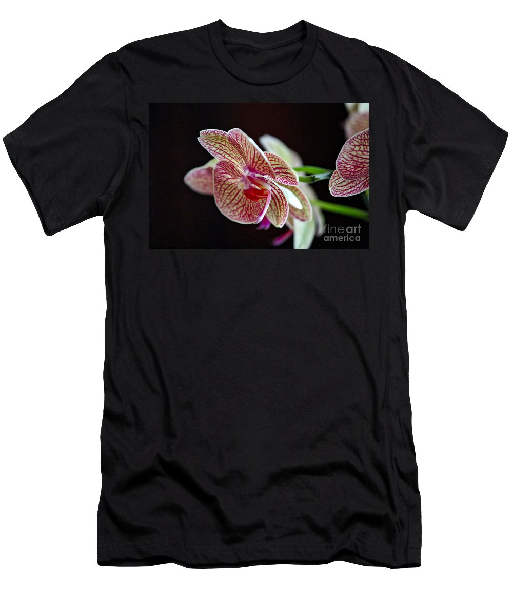 Orchid Men's T-Shirt (Athletic Fit) featuring the photograph Study Of An Orchid 3 by Karin Everhart
