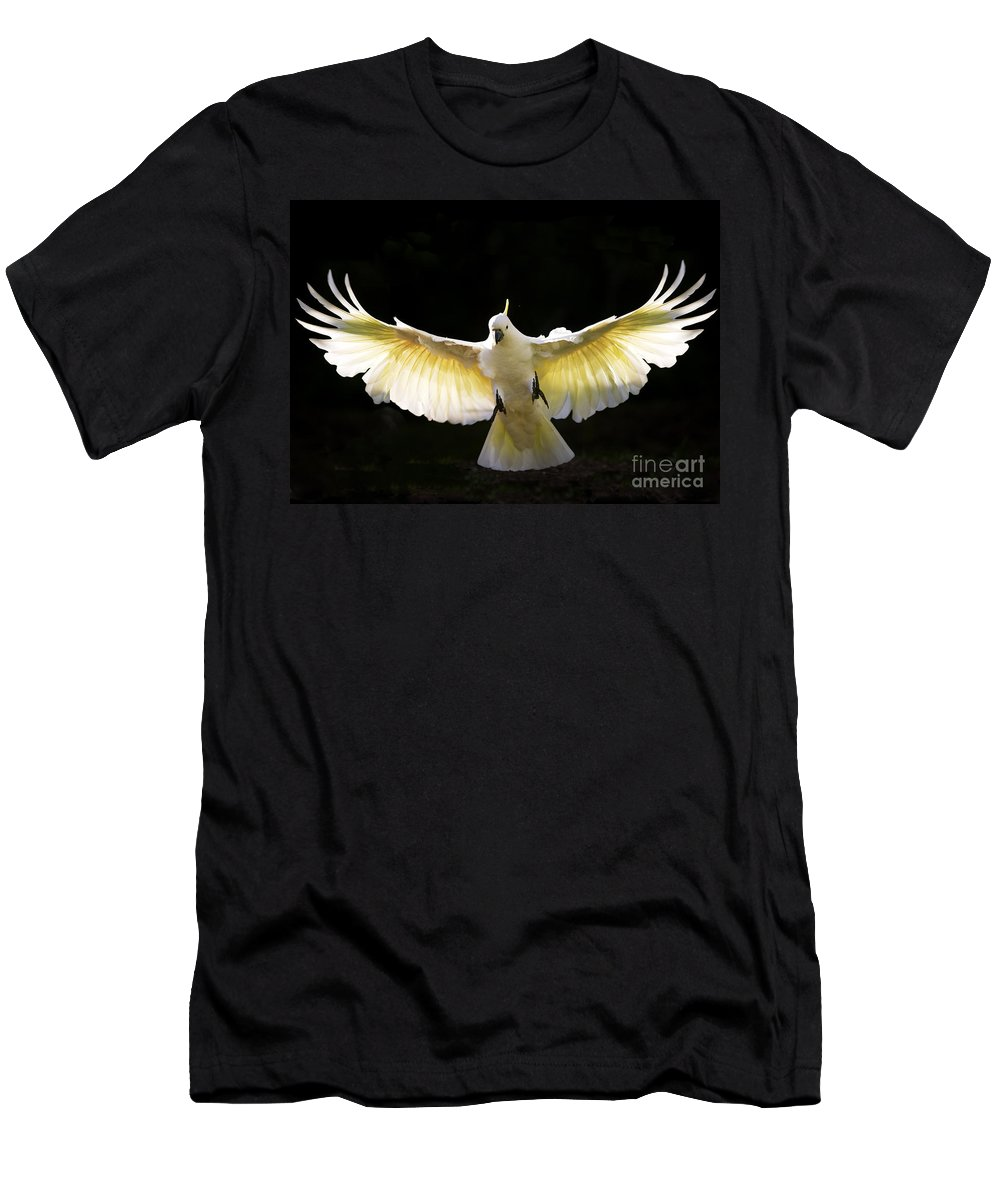Sulphur Crested Cockatoo Australian Wildlife Men's T-Shirt (Athletic Fit) featuring the photograph Sulphur Crested Cockatoo In Flight by Sheila Smart Fine Art Photography
