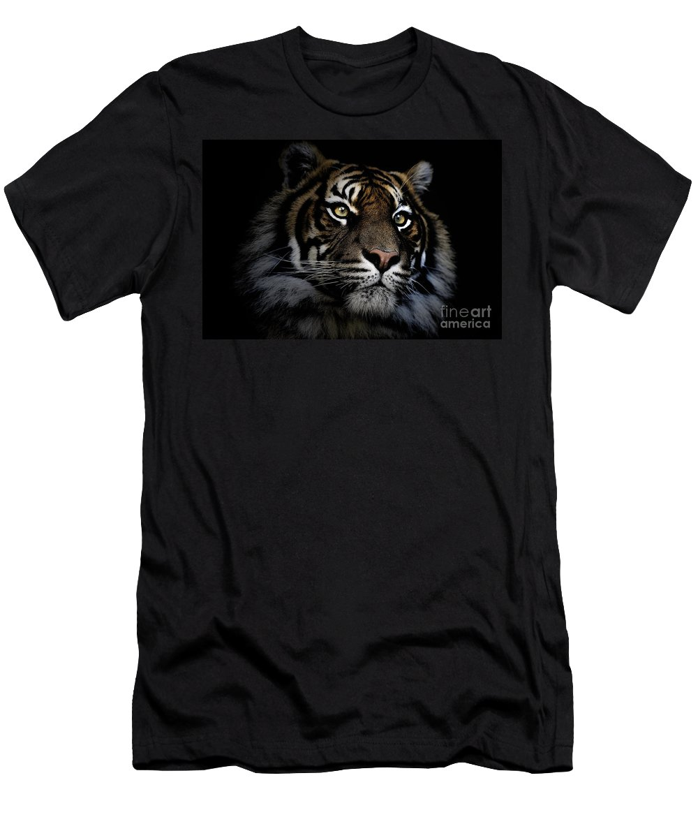 Sumatran Tiger Wildlife Endangered Men's T-Shirt (Athletic Fit) featuring the photograph Sumatran Tiger by Sheila Smart Fine Art Photography