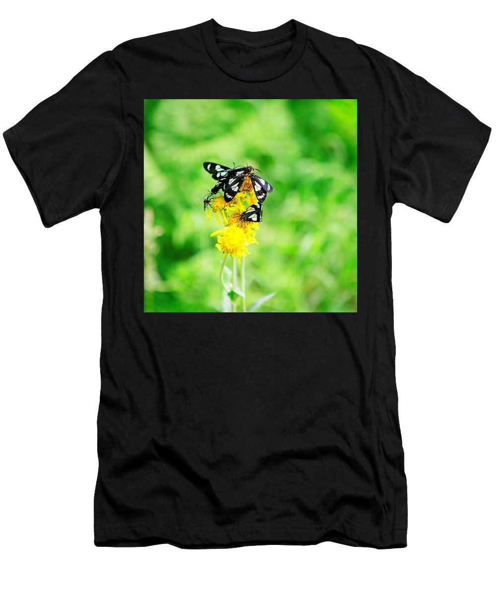 Arizona Men's T-Shirt (Athletic Fit) featuring the photograph Summer Field by CEB Imagery