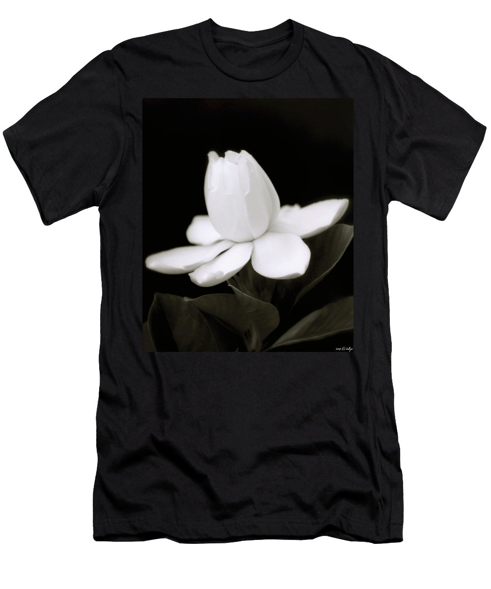 Flower Men's T-Shirt (Athletic Fit) featuring the photograph Summer Fragrance by Holly Kempe