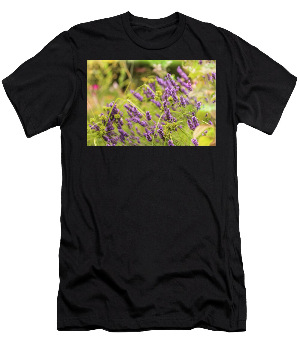 Summer Men's T-Shirt (Athletic Fit) featuring the photograph Summer Lavender In Lush Green Fields by Zahra Majid