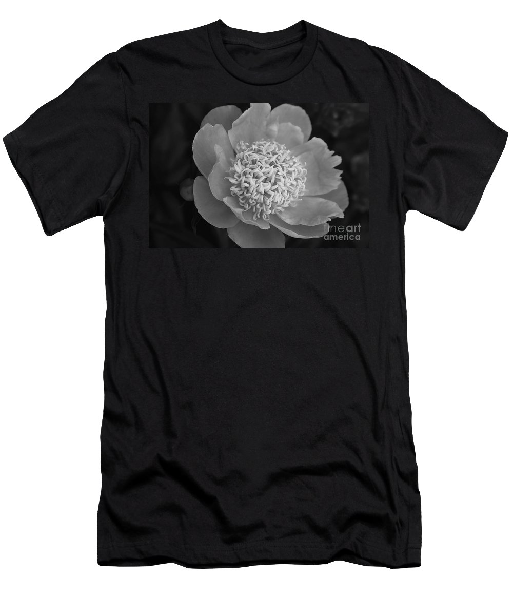 Peony Men's T-Shirt (Athletic Fit) featuring the photograph Summer Peony by Kathy McClure