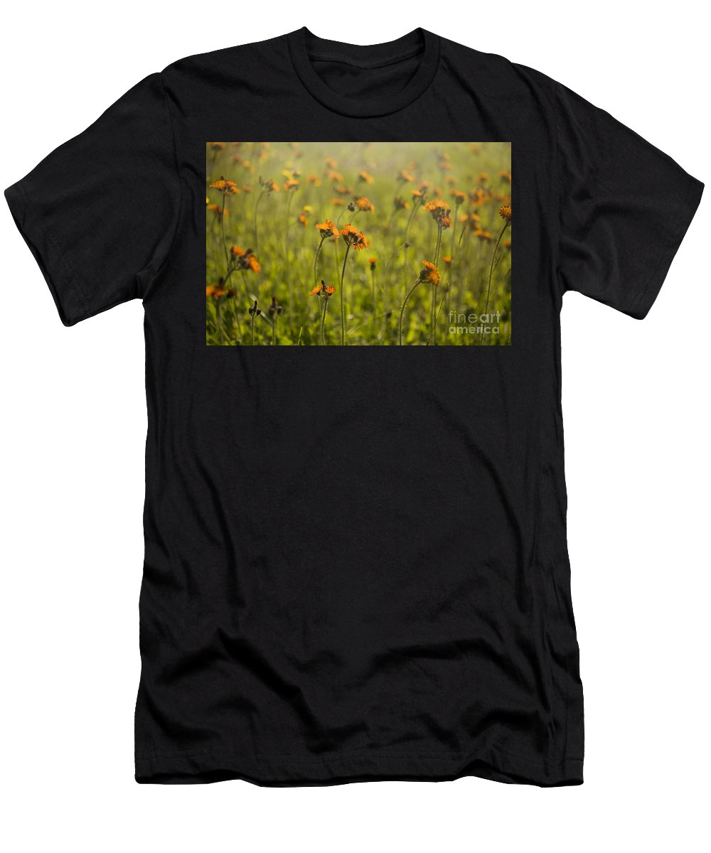 Wildflowers Men's T-Shirt (Athletic Fit) featuring the photograph Summer Wildflowers by Diane Diederich