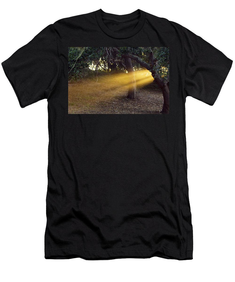 Landscape Men's T-Shirt (Athletic Fit) featuring the photograph Sun Rays 2 by Jill Reger