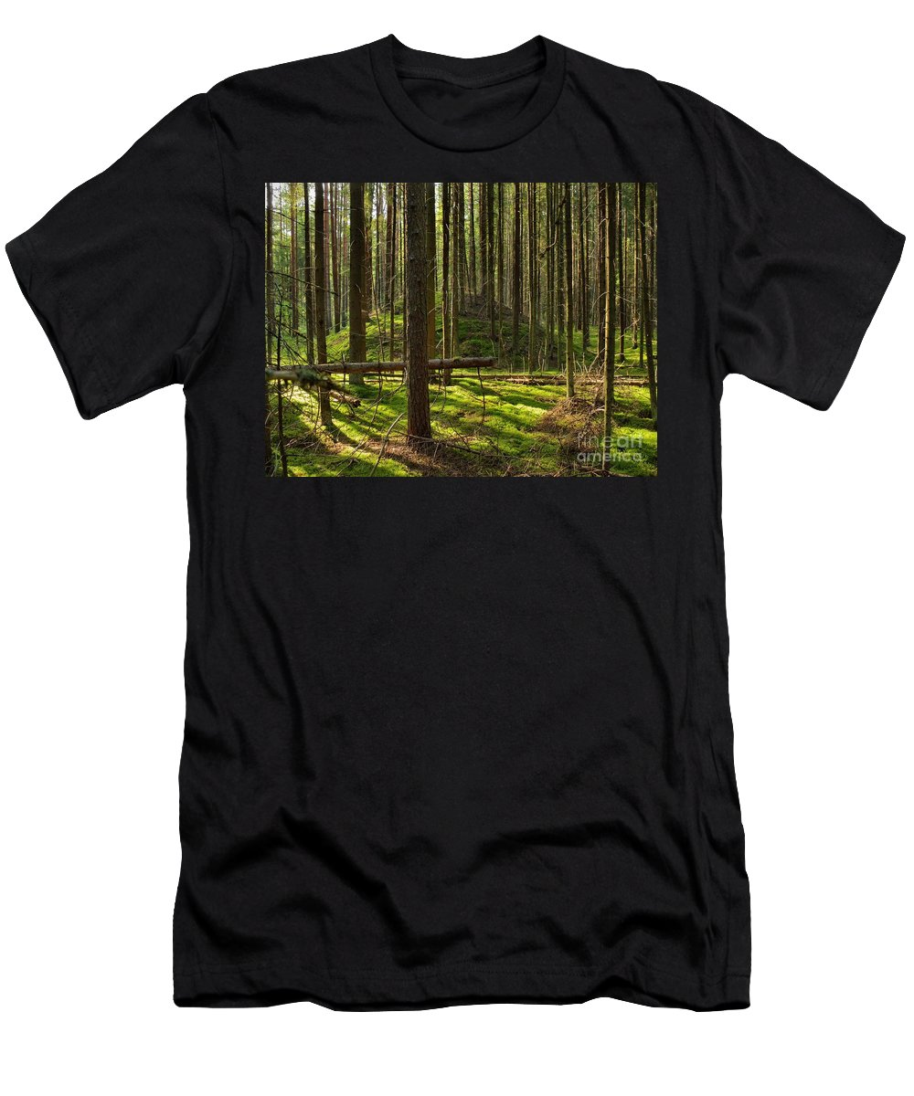 Ancient Men's T-Shirt (Athletic Fit) featuring the photograph Sun Rays In Forest by Vadzim Kandratsenkau