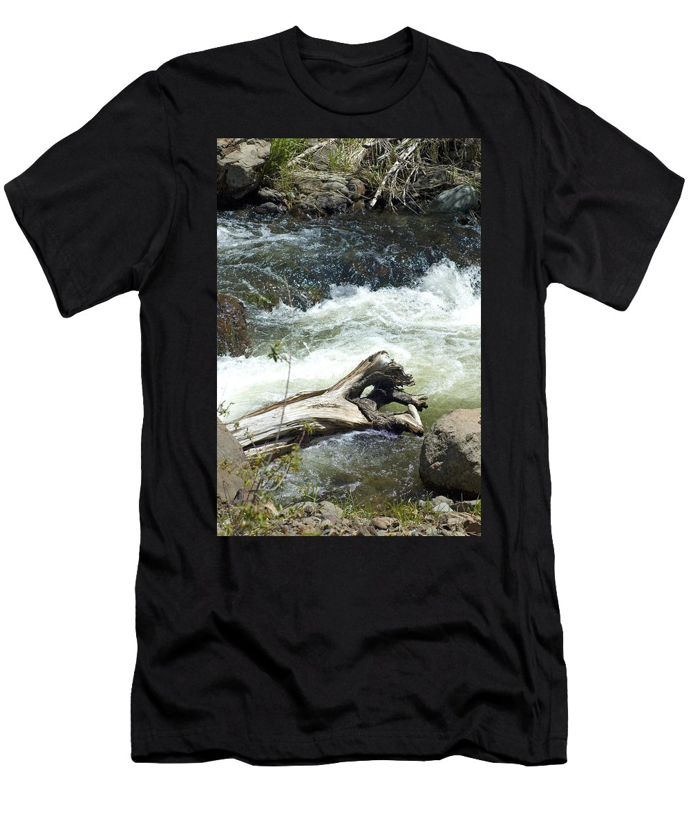 River Men's T-Shirt (Athletic Fit) featuring the photograph Sunbathing by Sara Stevenson