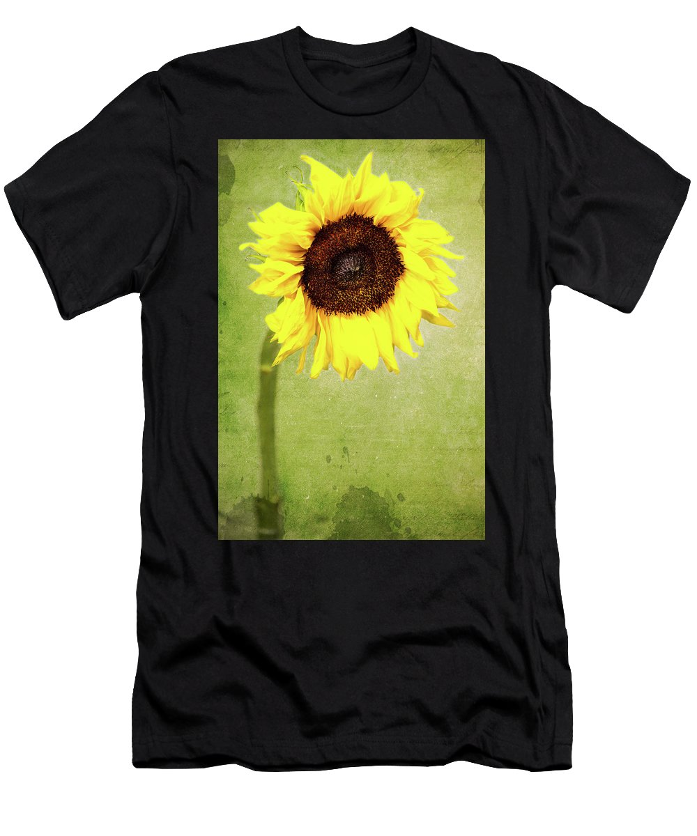Sunflower Men's T-Shirt (Athletic Fit) featuring the photograph Sunflower 1 by Kevin O'Hare