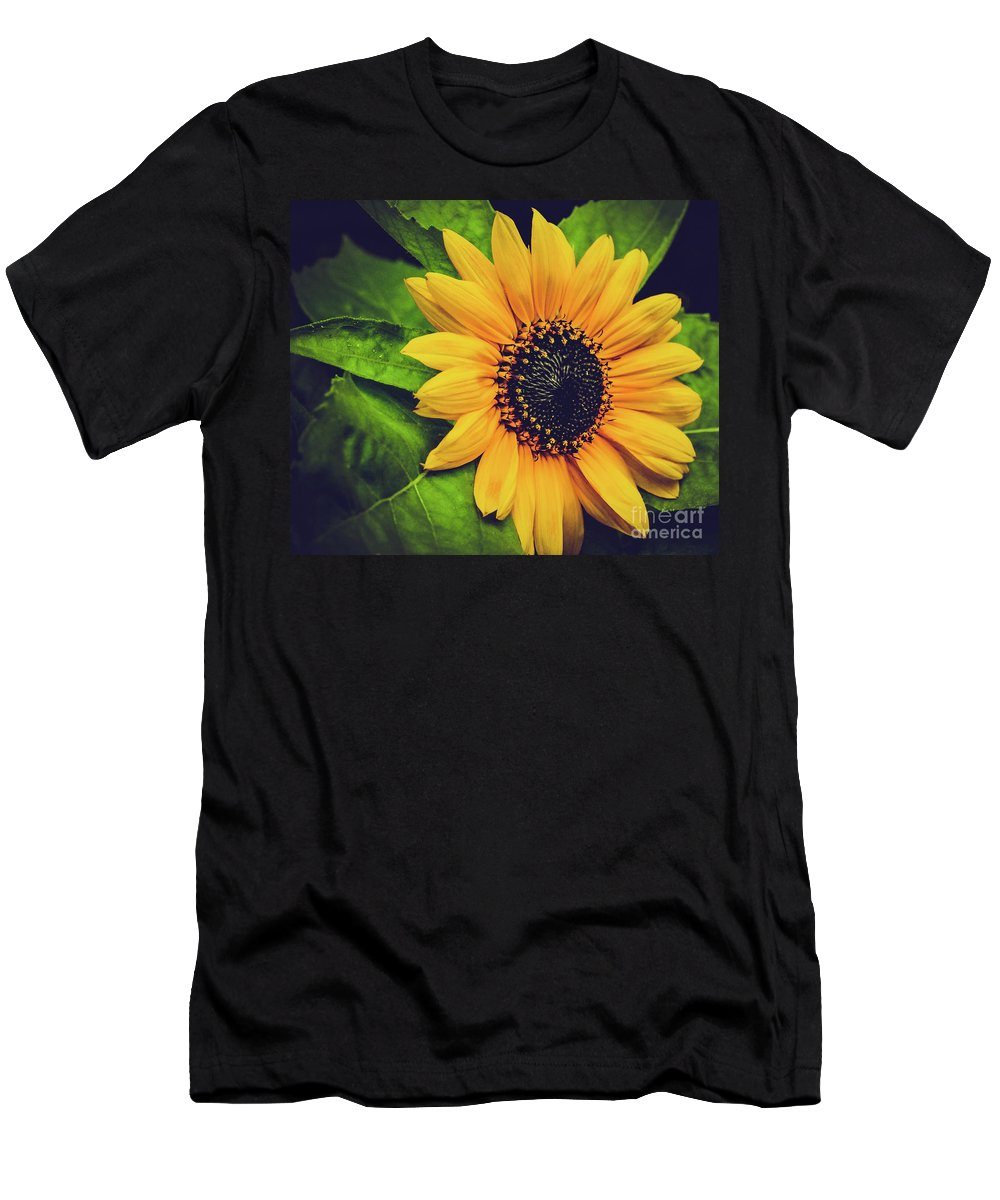 Flower Men's T-Shirt (Athletic Fit) featuring the photograph Sunflower by Carol A Commins